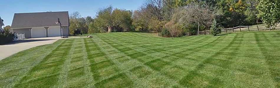 Professionally mowed lawn by Element Turf & Outdoor Solutions, LLC in Alton, IL.