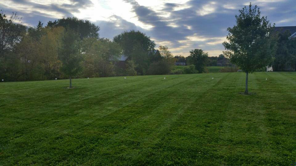 Large mowed property in Edwardsville, IL.