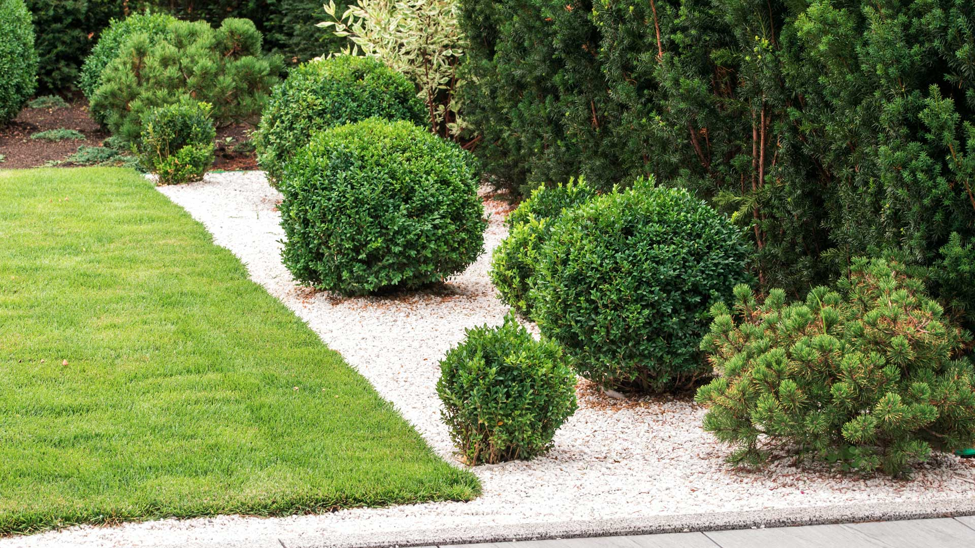 Perfectly trimming bushes and shrubs in front of a home in Edwardsville, IL.