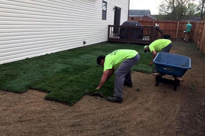 New sod laid in the backyard of a home in Godfrey home.